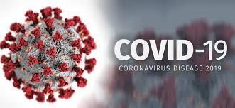 Covid, 7 positivi e 6 in sorveglianza attiva