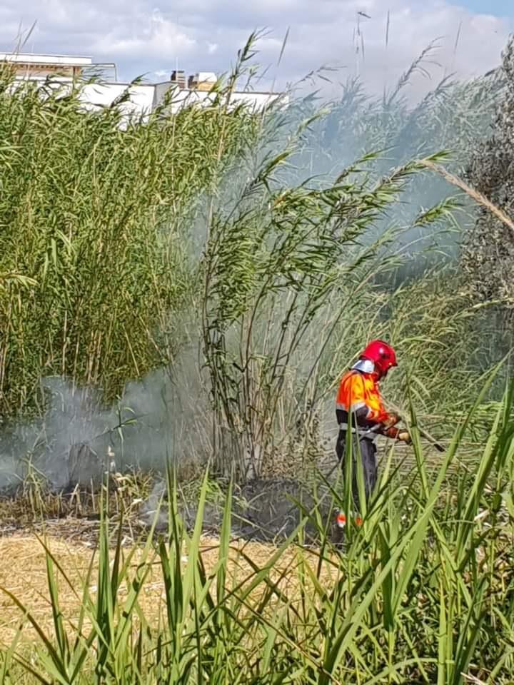 Cerveteri, incendio in zona Cerqueta