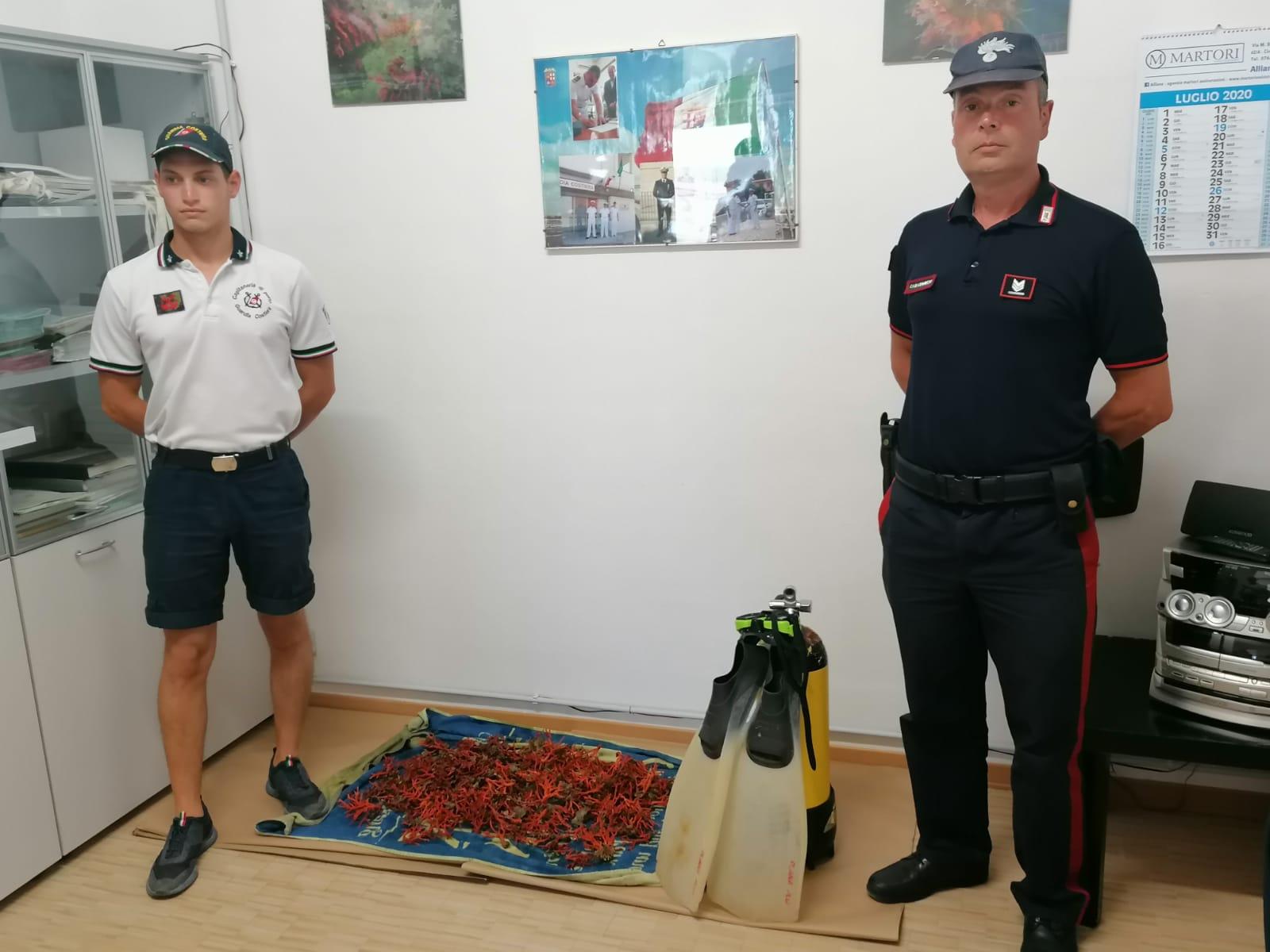 Montalto di Castro, Carabinieri e Guardia Costiera sequestrano 5 kg di corallo rosso